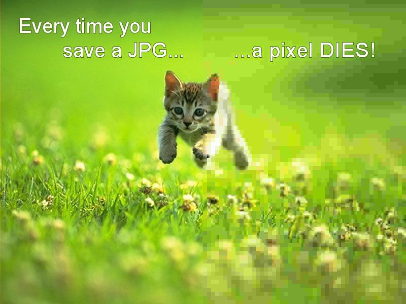 Every time you save a JPG, a pixel DIES!